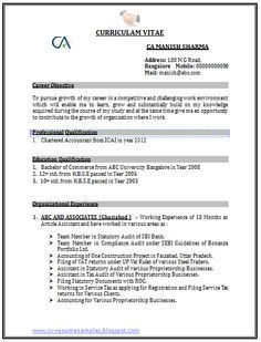 Professional Curriculum Vitae / Resume Template Sample Template Of A  Chartered Accountant (CA) With