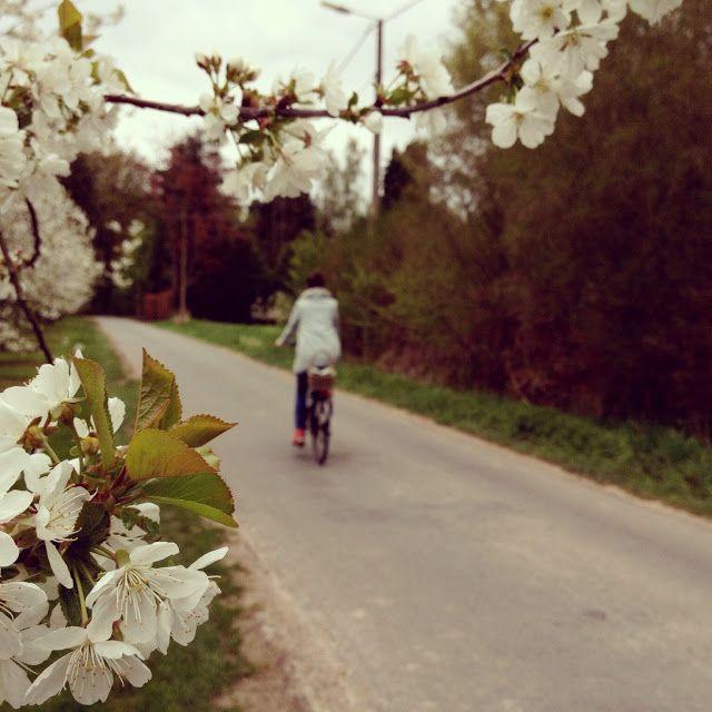 A bike ride...