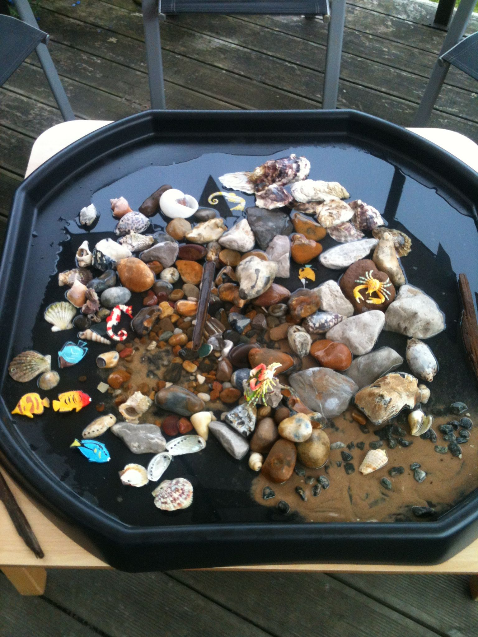 Rock Pool Play