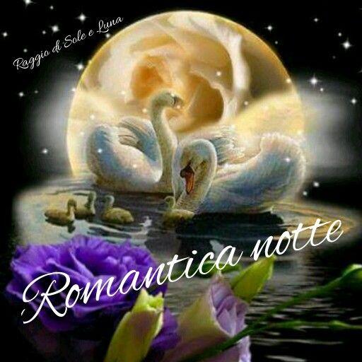 Buonanotte Raggio Di Sole E Luna 2016 2017 Animals Pandora E Pets
