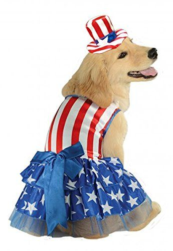 25 Adorable Diy Dog Costumes For Halloween Diy Dog Costumes Dog