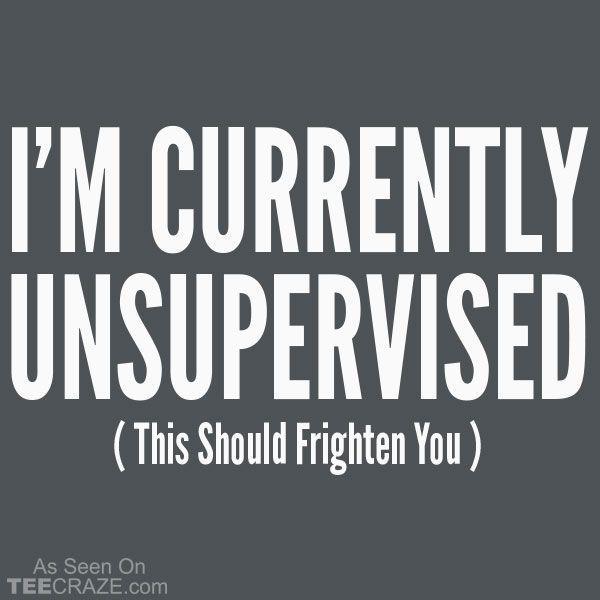 I'm Currently Unsupervised T-Shirt