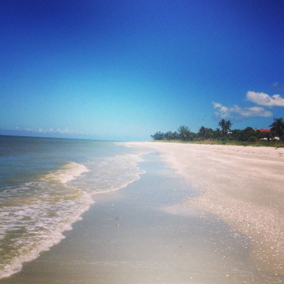 Captiva Island: We Live In A Beautiful World