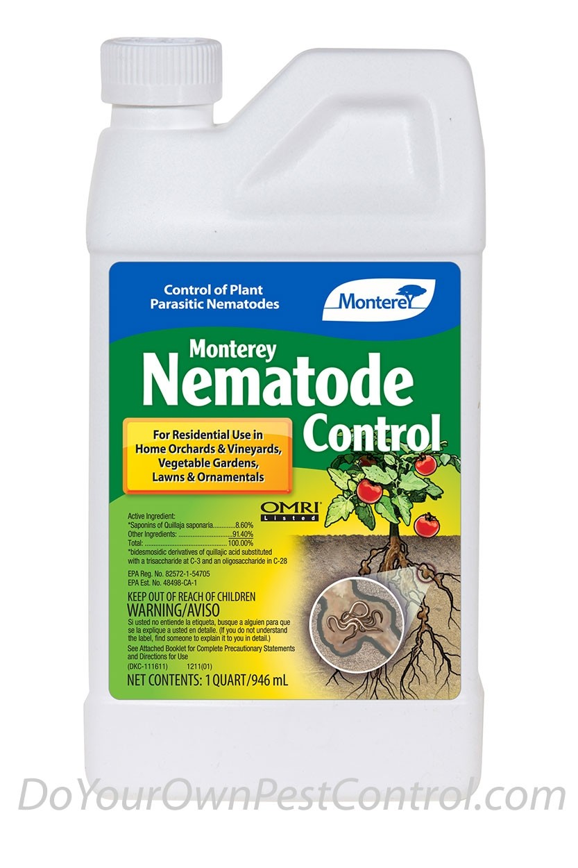 How To Control Nematodes In Home Gardens