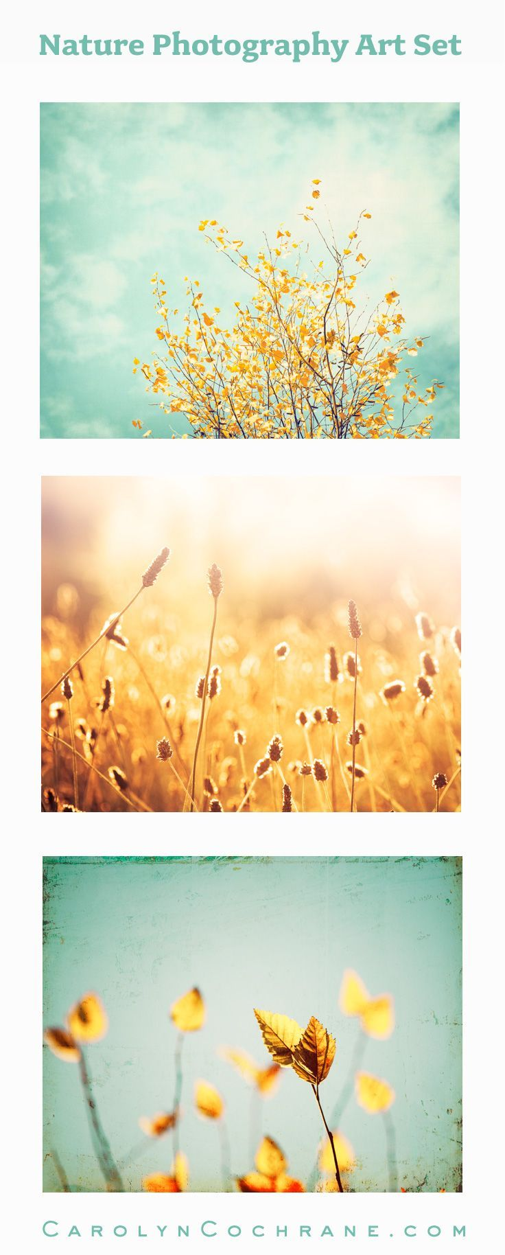 Mint Yellow Photography, Set of 4 | Wall art sets, Walls and Decorating