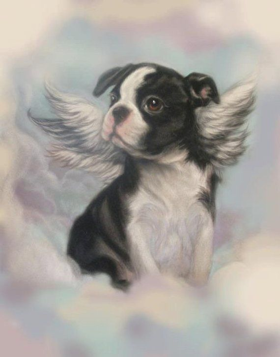Boston Terrier Angel Print Decoupaged On Wood Etsy In 2020 Boston Terrier Art Boston Terrier Dog Boston Terrier Love