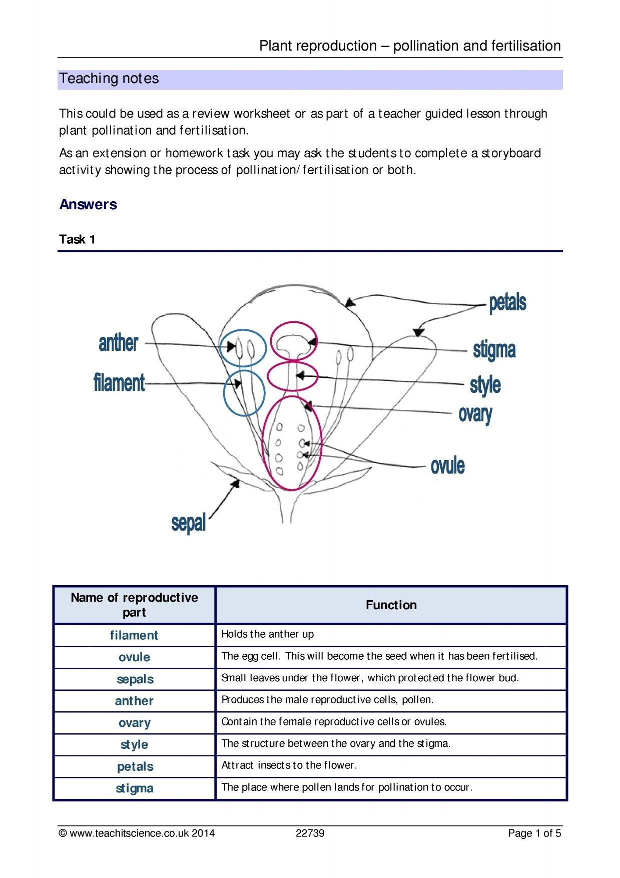 Plant Reproduction Worksheet Answers Plant Reproduction