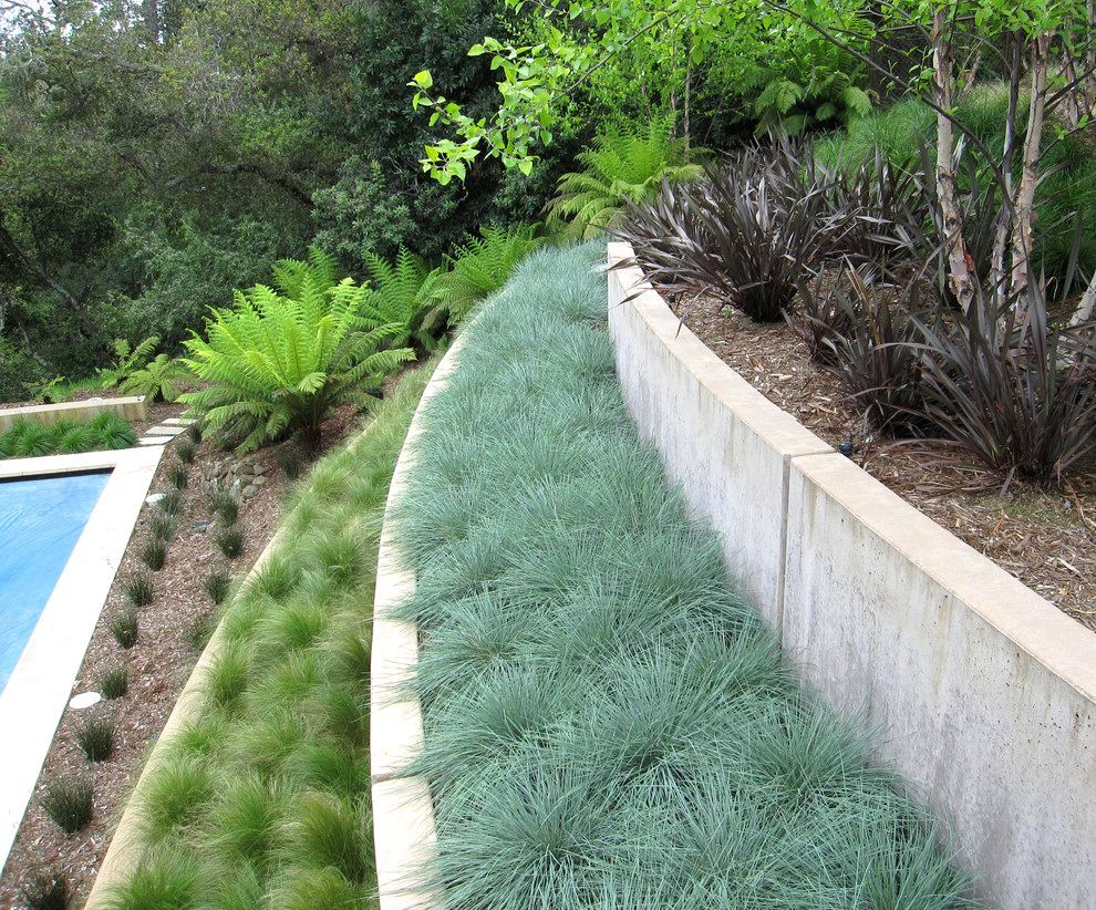 Low Maintenance Landscaping Ideas Retaining Walls Hillside Landscaping On Pinterest Hillside Garden Lands With Images Sloped Garden Terraced Landscaping Modern Landscaping