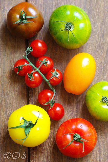 Tomato love.