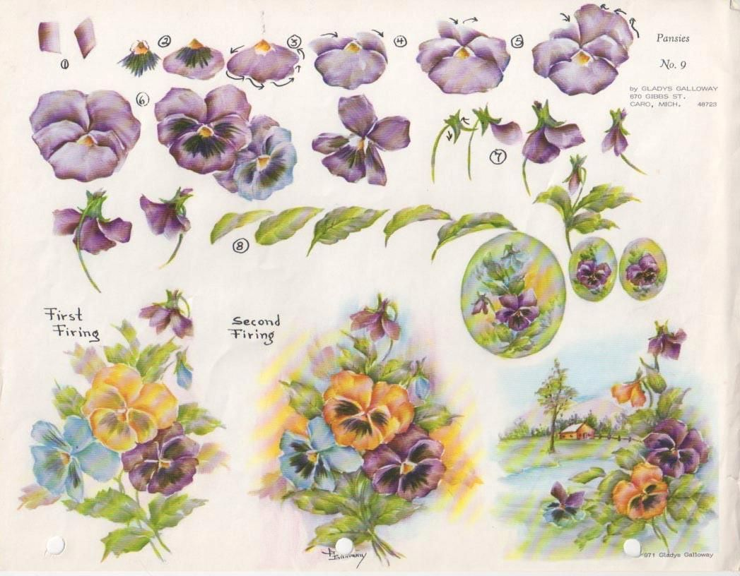Pittura Viole Gladys Galloway China Painting Study No 9 Pansies Pittura