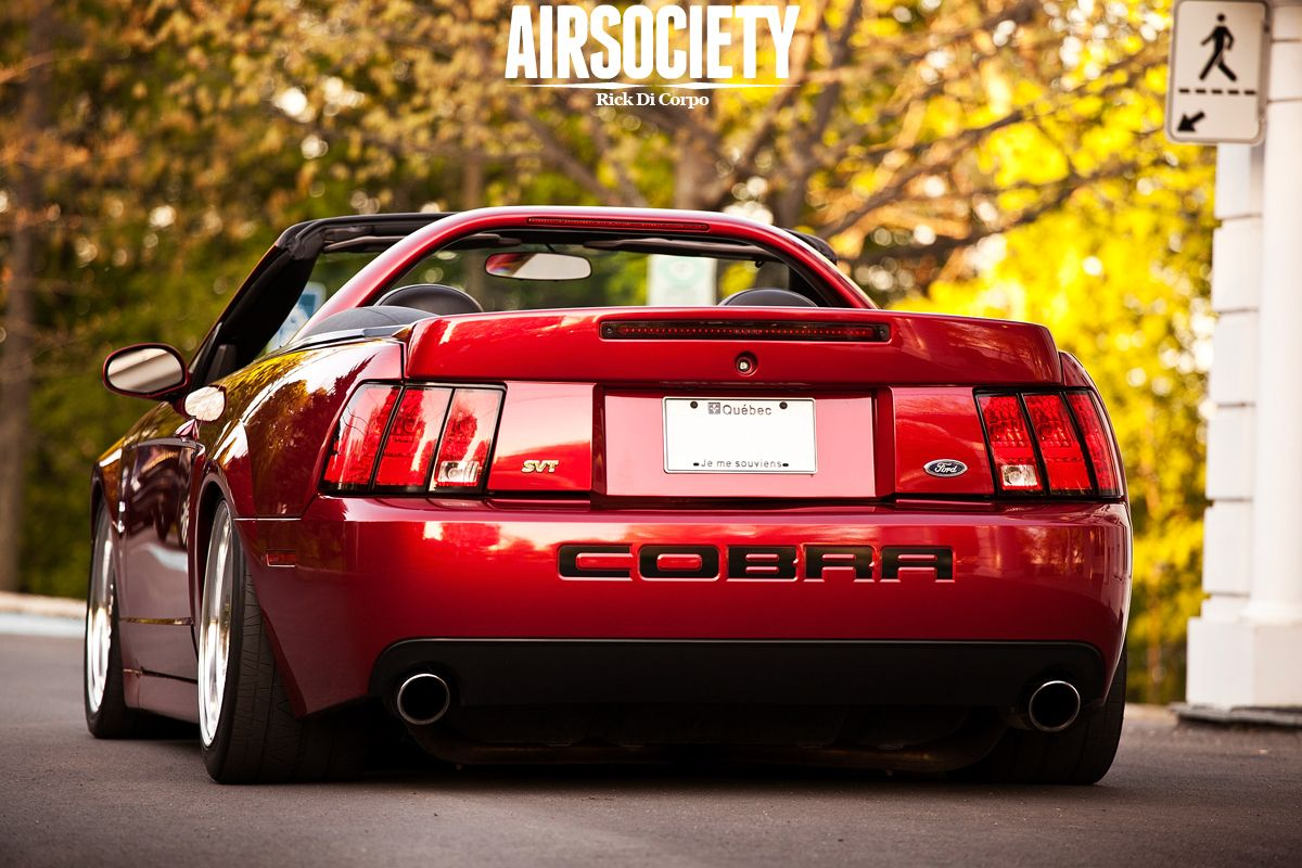 Powering down a freeway on a sunday afternoon in a 2003 ford mustang svt cobra has