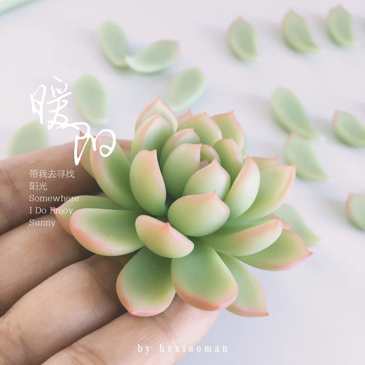 Cactus Porselein Pin Van Owenmoli Op Succulent Clay Best Creations D In
