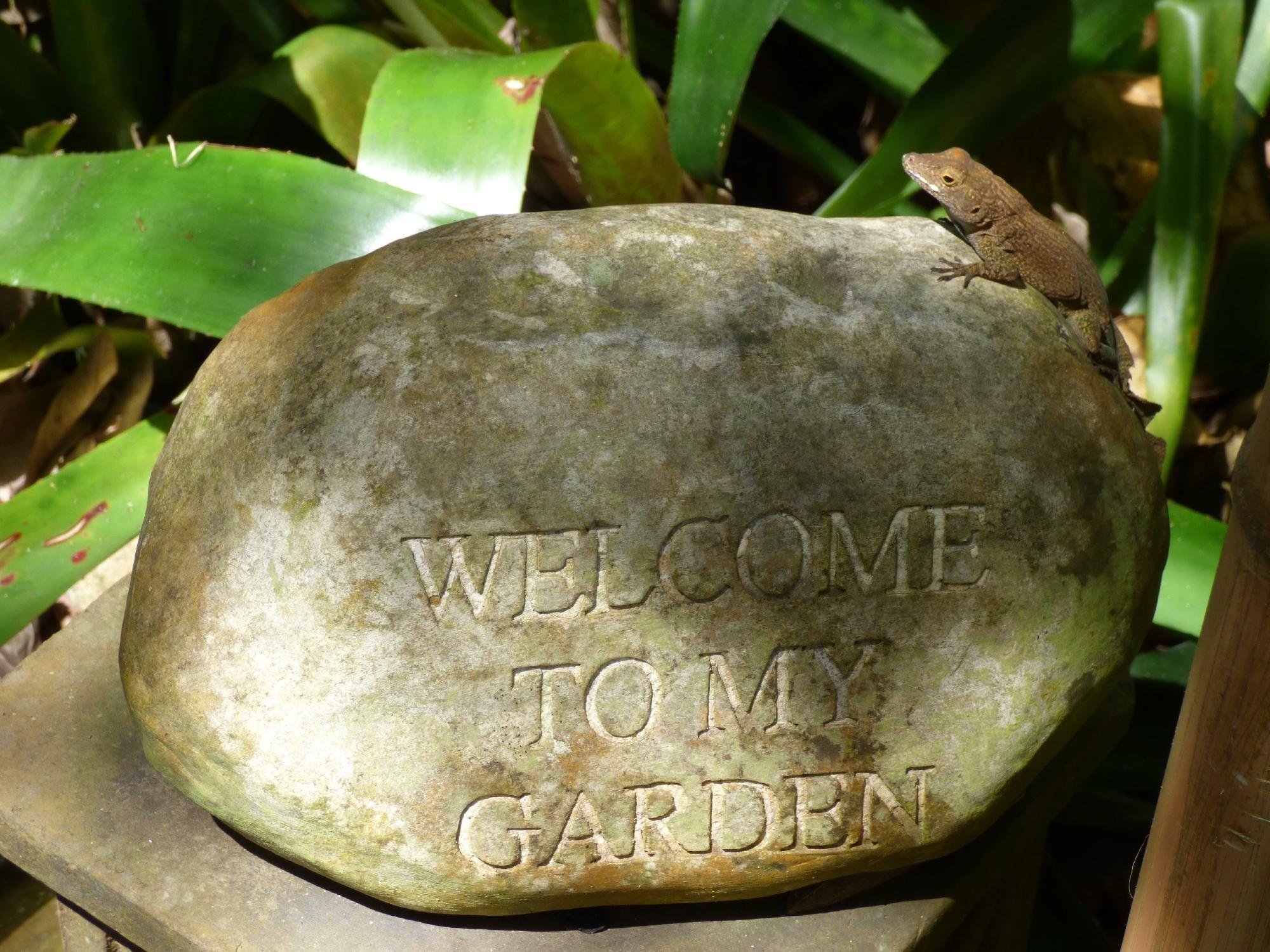 Phantasea Tropical Botanical Garden (St. Thomas, U.S. Virgin Islands ...
