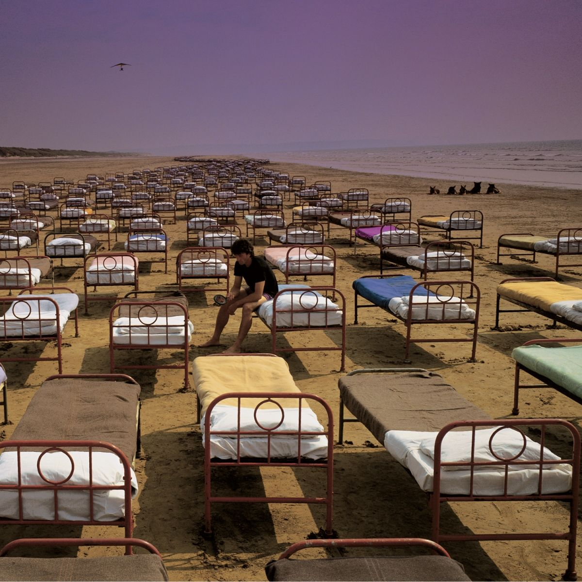 (1) Pink Floyd – A Momentary Lapse Of Reason (2011 Remastered Version) (2011 Remastered Version) – Rdio