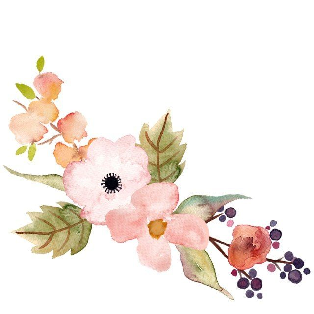 beautiful hand painted floral clip art part of my new set floral rh pinterest com floral clip art borders floral clipart for banners