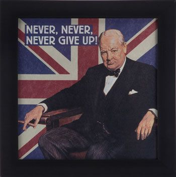 Whenever I Hear Anyone Say Never Give Up I Instantly Add Never