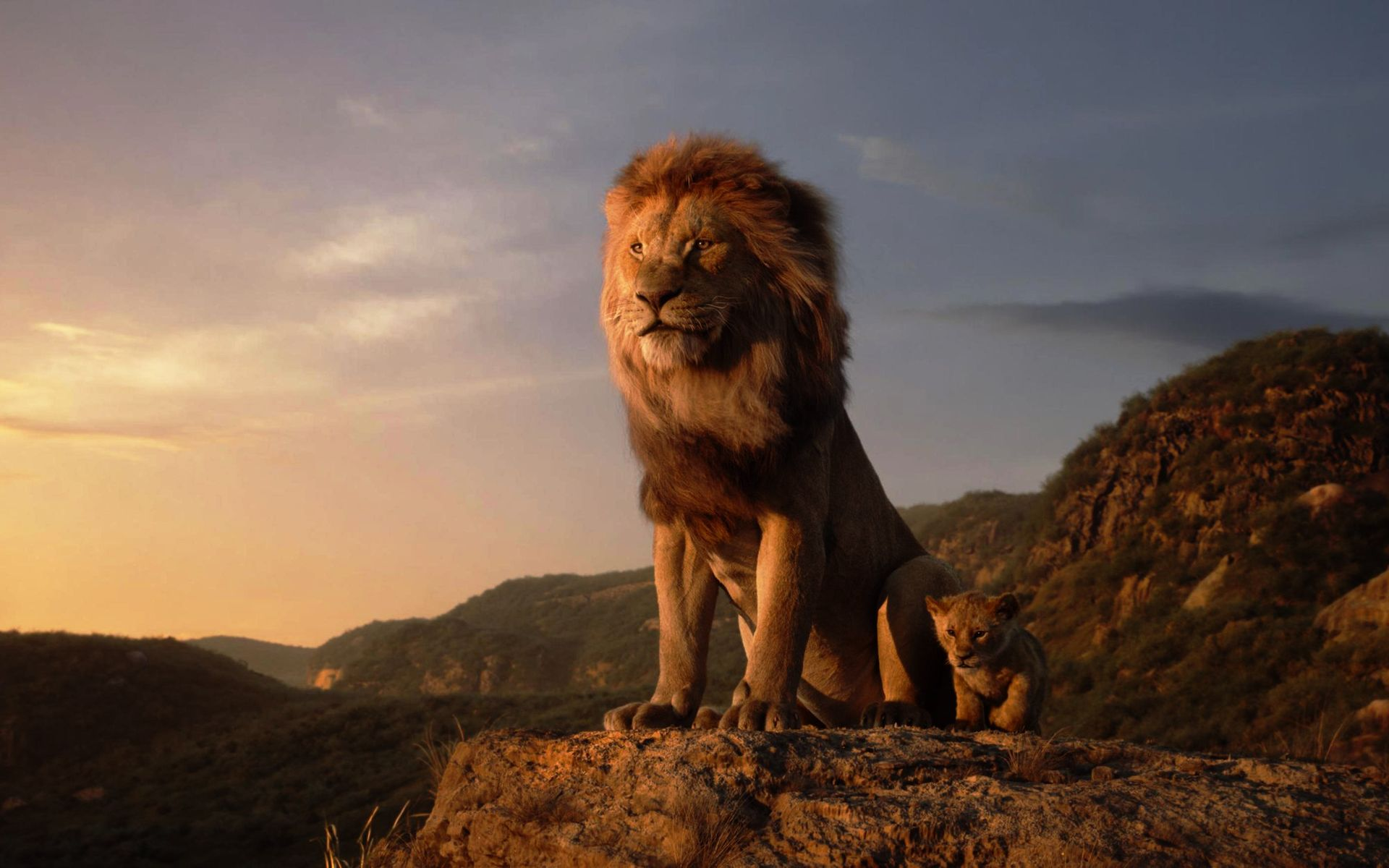 The Lion King 2019 Wallpaper Pc Lion King Movie Lion King Remake Lion King Tickets