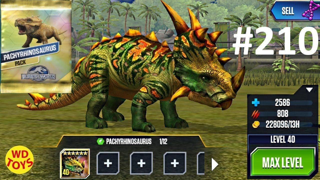 New Pachyrhinosaurus Tournament Winner Top 1 Dominator League