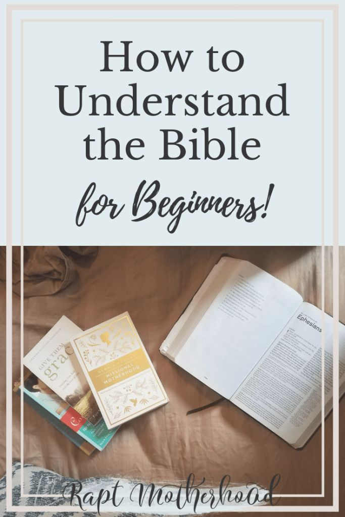 how to study bible for beginners