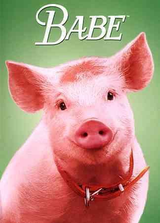 Image result for Babe pig movie sketch
