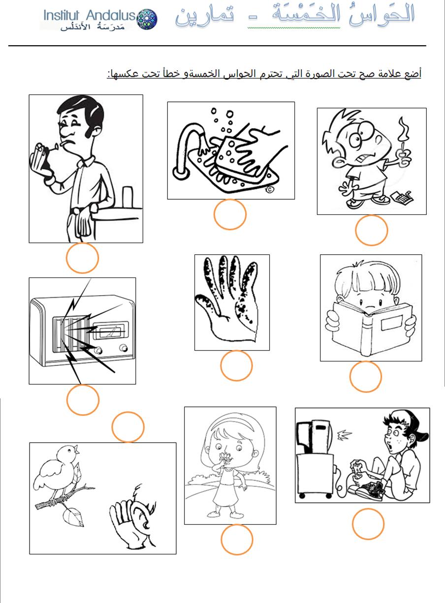 Exercise The Five Senses In Arabic P 6 6 Arabic Worksheets Teach Arabic Comics [ 1226 x 904 Pixel ]