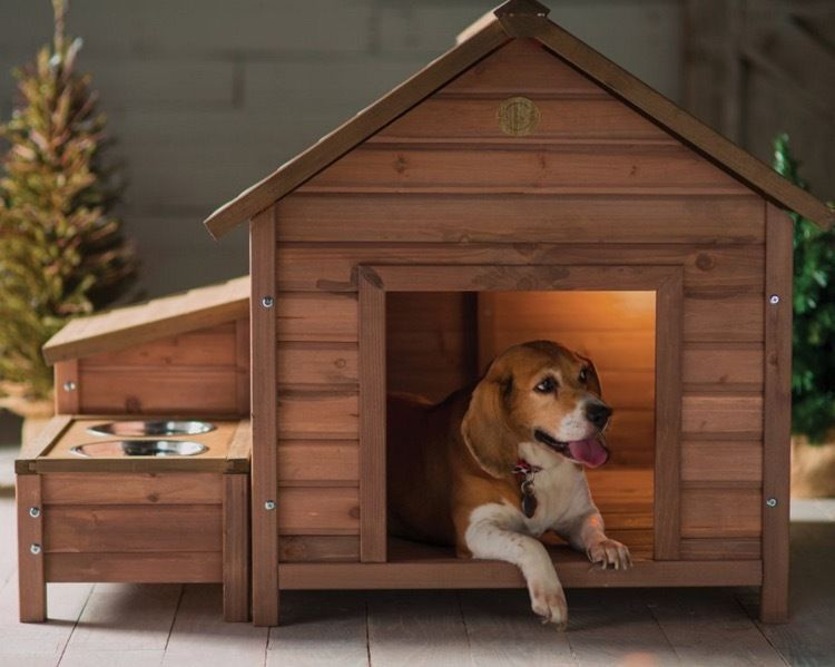 Dog Houses For Medium Dogs Cute Shelter Small Large Dog Kennels