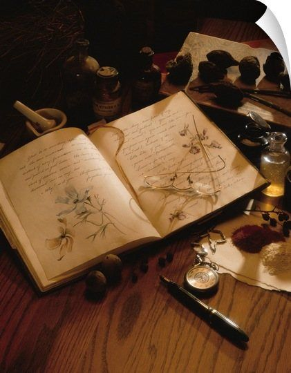 Several Small Items From A Journal With Sketches To Herbs Lay On A