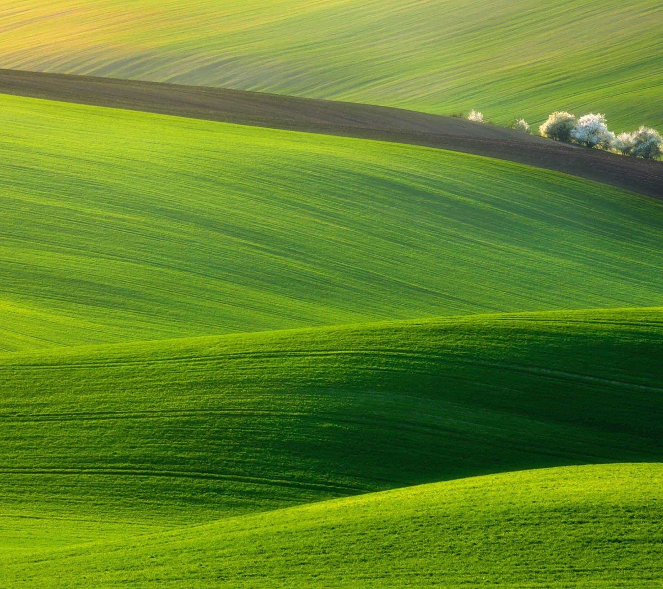 Green Field - Tap to see more #beautiful #field #scenery wallpapers - @mobile9 | Scenery wallpaper, Scenery, Field