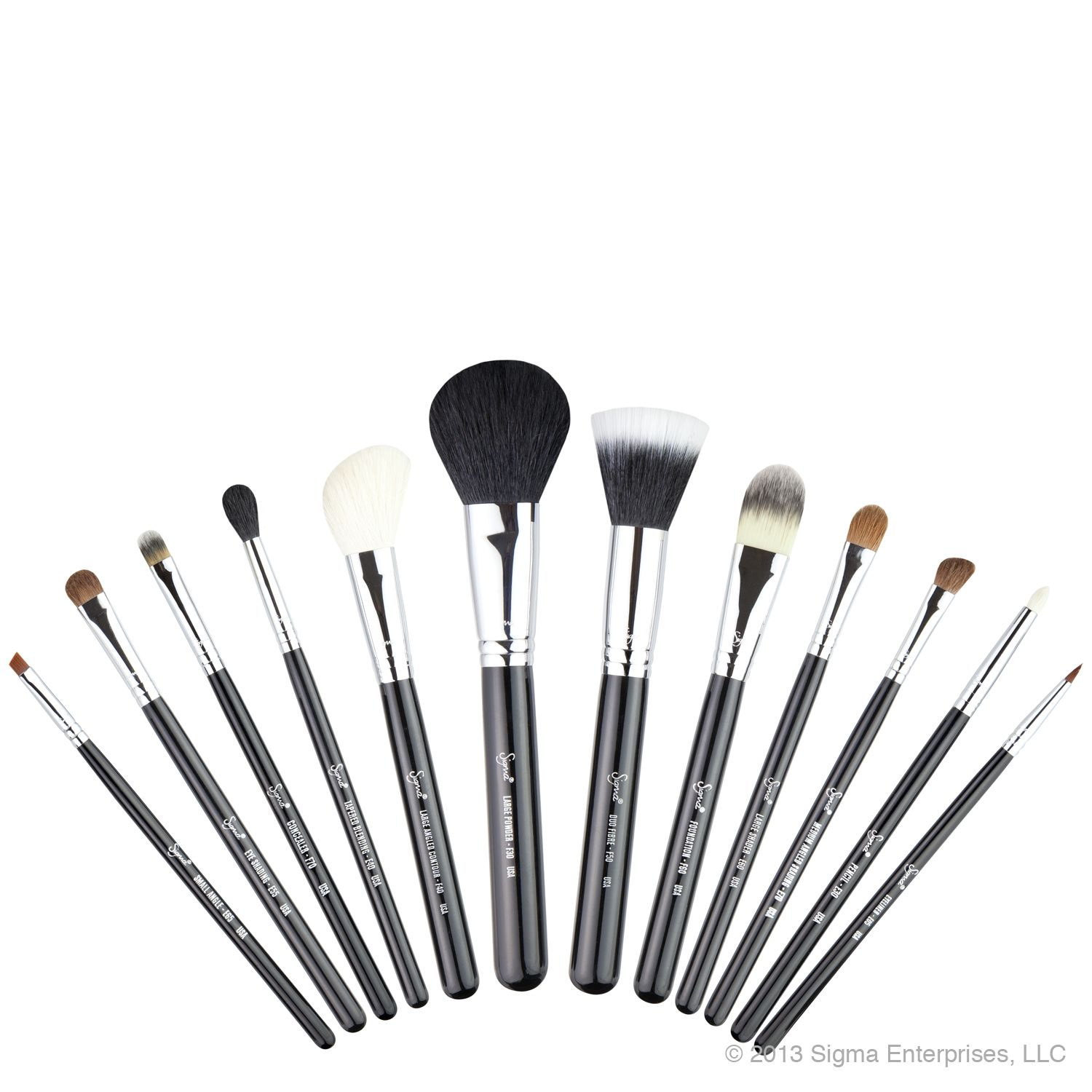 Essential Brush Kit Sigma brushes, Best makeup brushes