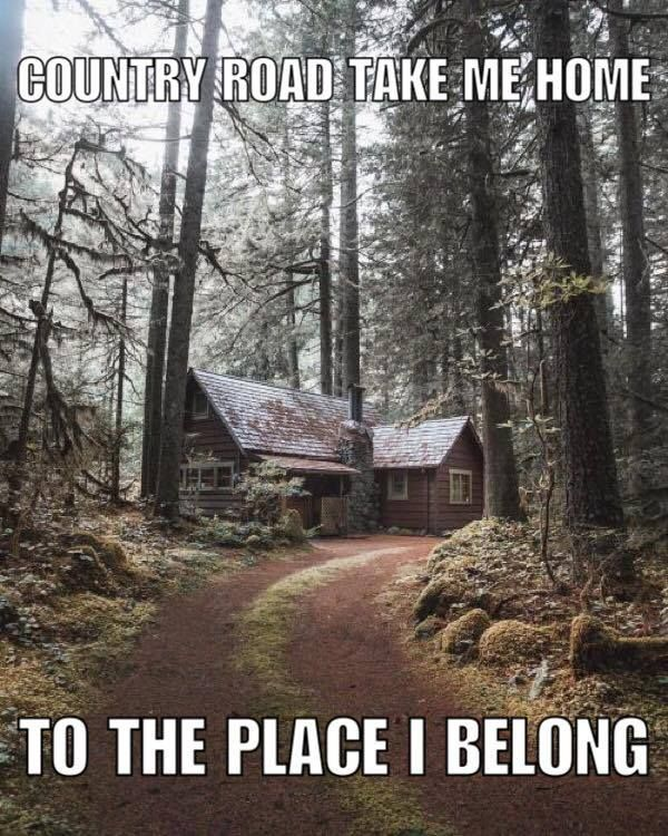 Take Me Home Cabins In The Woods House In The Woods Cabin Life