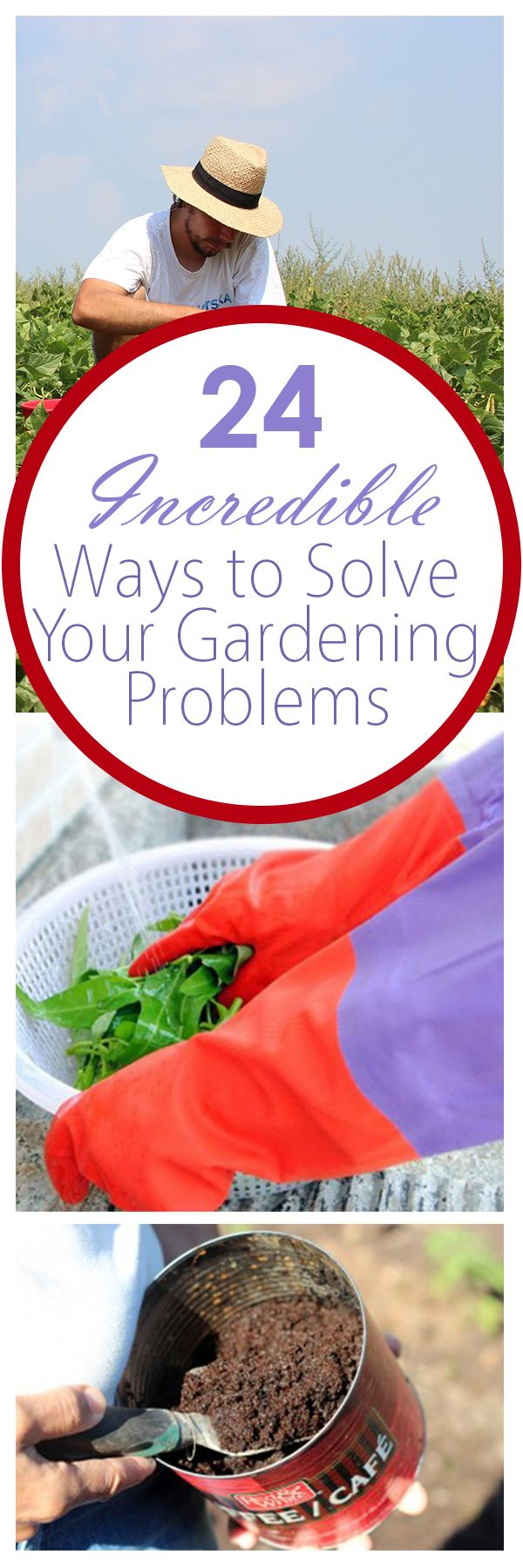 Solve some of the most obnoxious gardening problems with