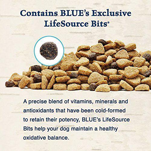 Blue Buffalo Wilderness Grain Free Dry Dog Food Salmon Recipe 24