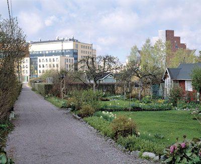 Siirtolapuutarha Helsinki