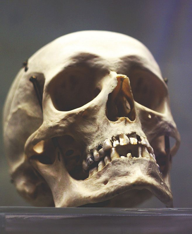 Human Jaw Tattoo: Skulls And Bones In 2019