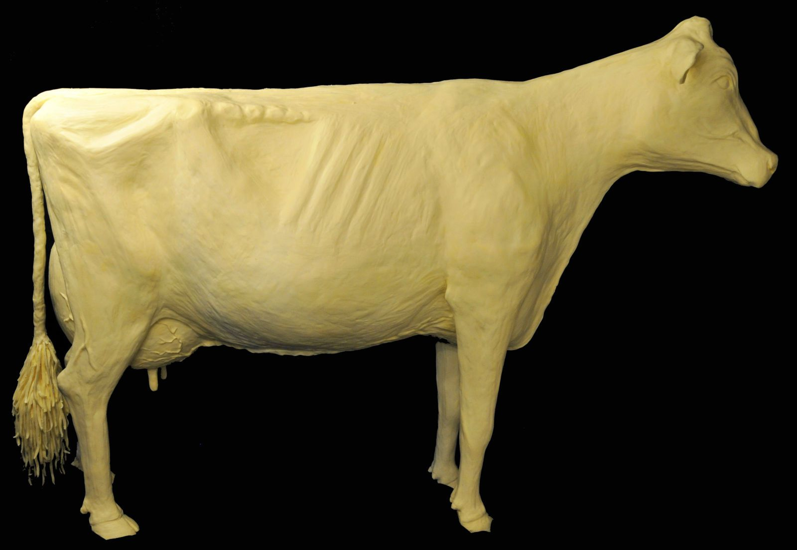 Inside The Making Of The Iowa State Fair S Famous Butter Cow