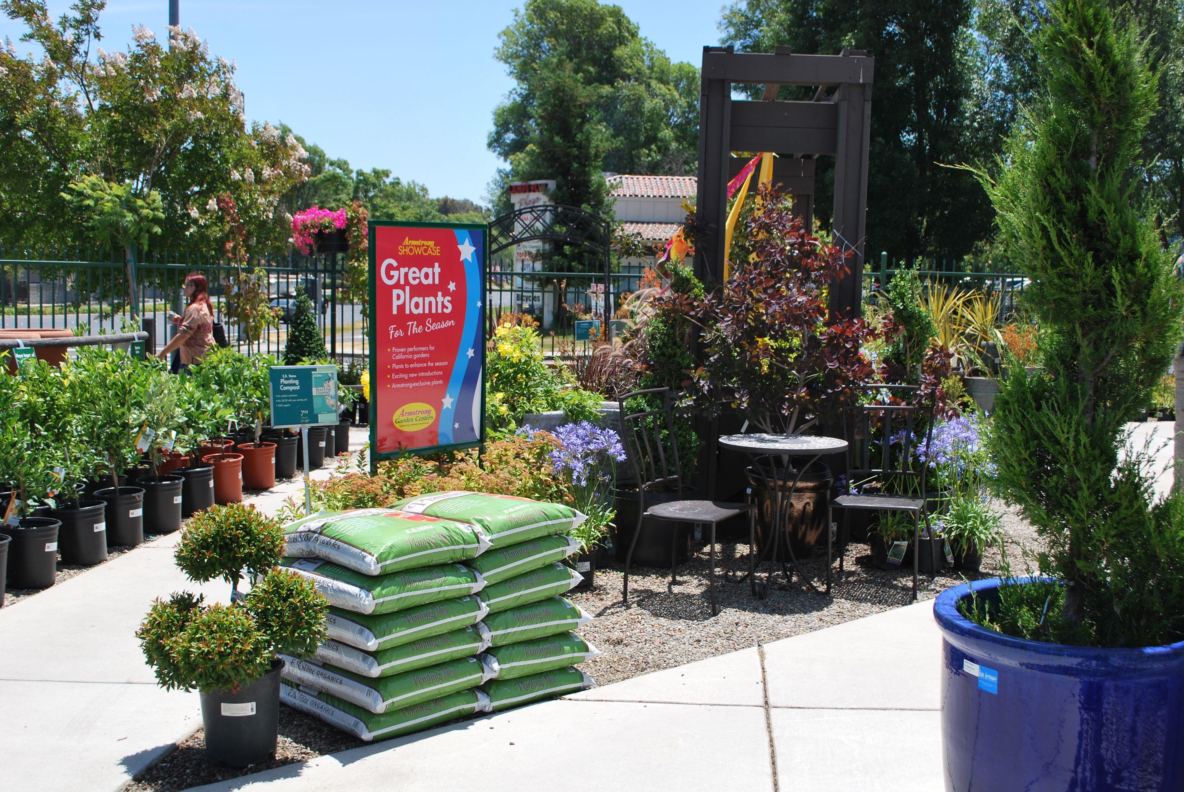 Armstrong Garden Centers Garden Center Displays Garden Center Plants