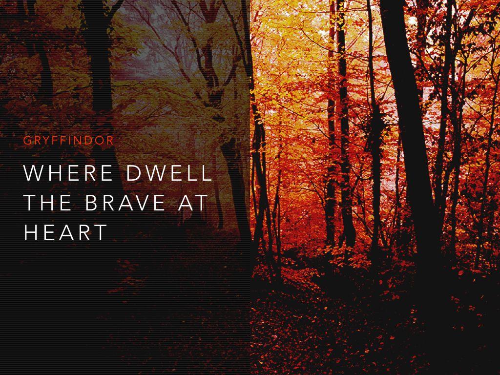 Top Wallpaper Harry Potter Autumn - b589a959aac79d399a991aebbcf4a686  You Should Have_191888.jpg