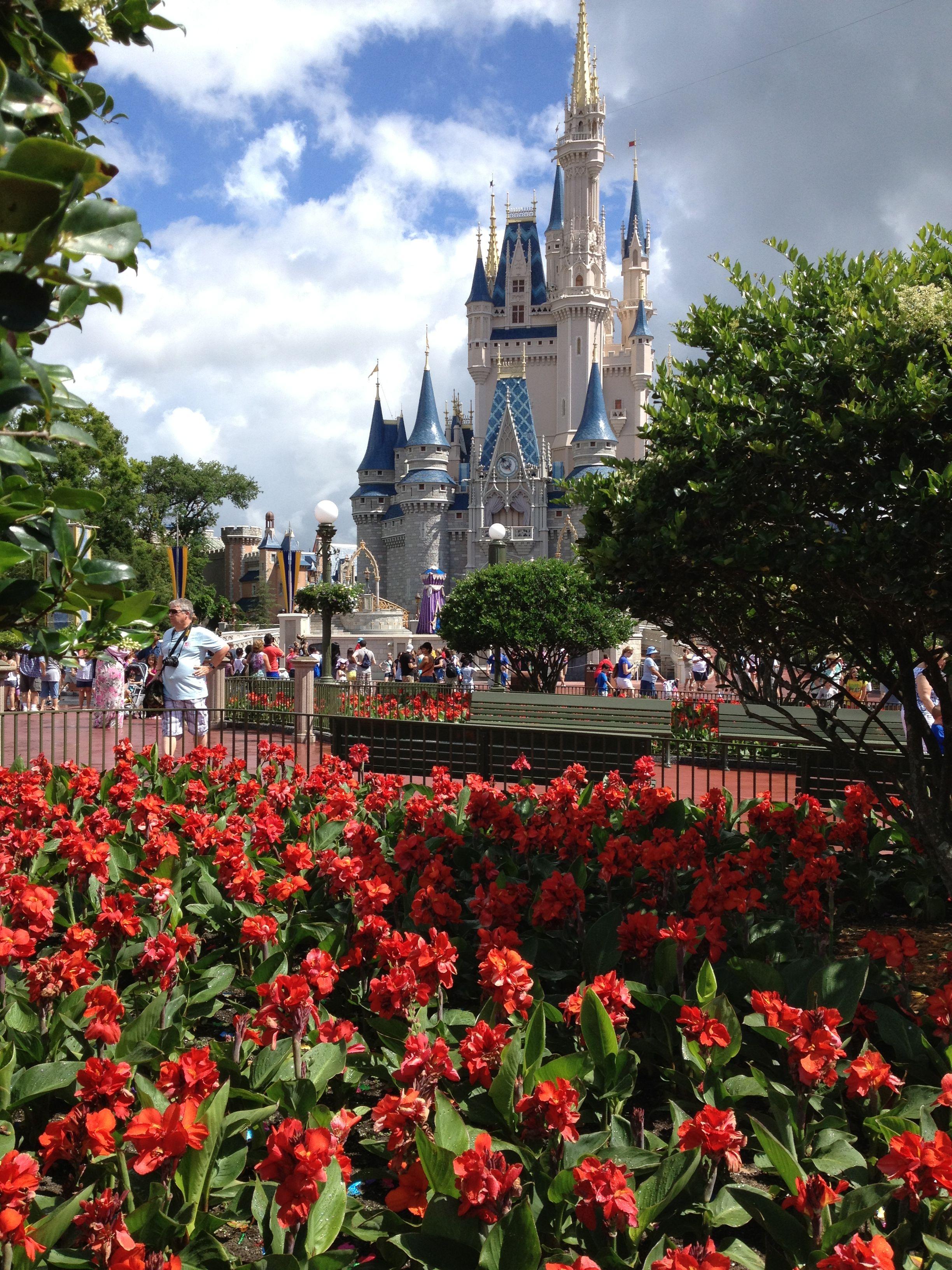 Disney world magic kingdom cinderellas castle disney