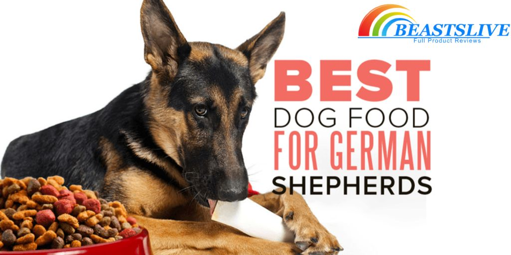 Raw Fed German Shepherd Mix Raw Dog Diet 63 Dog Raw Diet Dog