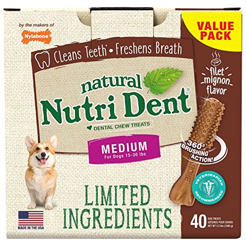 Nylabone Nutri Dent Limited Ingredients Medium Filet Mignon Dental