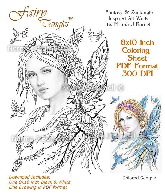 Jaye and Feathered Friends Blue jay Fairy Tangles Adult Coloring