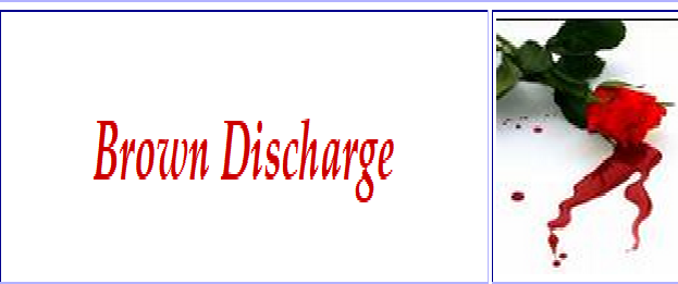 Discharge brown blood vaginal