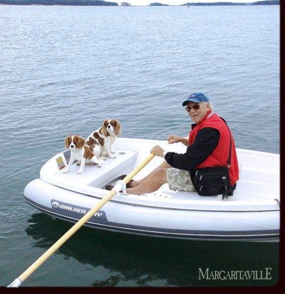 Jimmy Buffett With Cavalier King Charles Spaniels Cavalier King Charles Dog King Charles Dog King Charles Spaniel