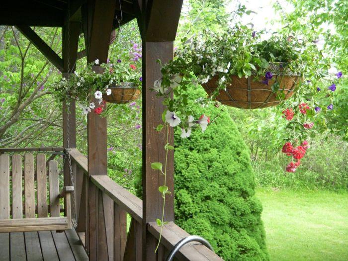 Hangepflanzen Fur Balkon Welche Pflanzen Sind Auf Den Balkon Zu