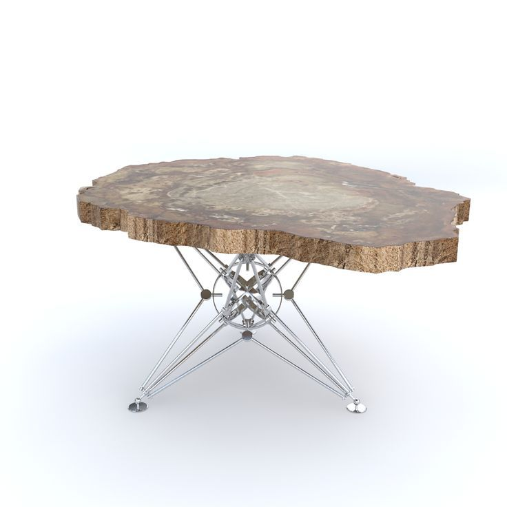 CoffeeTable, petrified wood, metal table base, modern furniture, collectible design by irraziodesign furniture