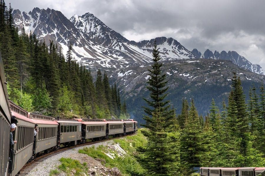 Adventure Alaska, a complete travel solution, offers you an opportunity to know the place very closely in small groups. This travel agent helps you feel the nature closely and know the lives here in a better way.