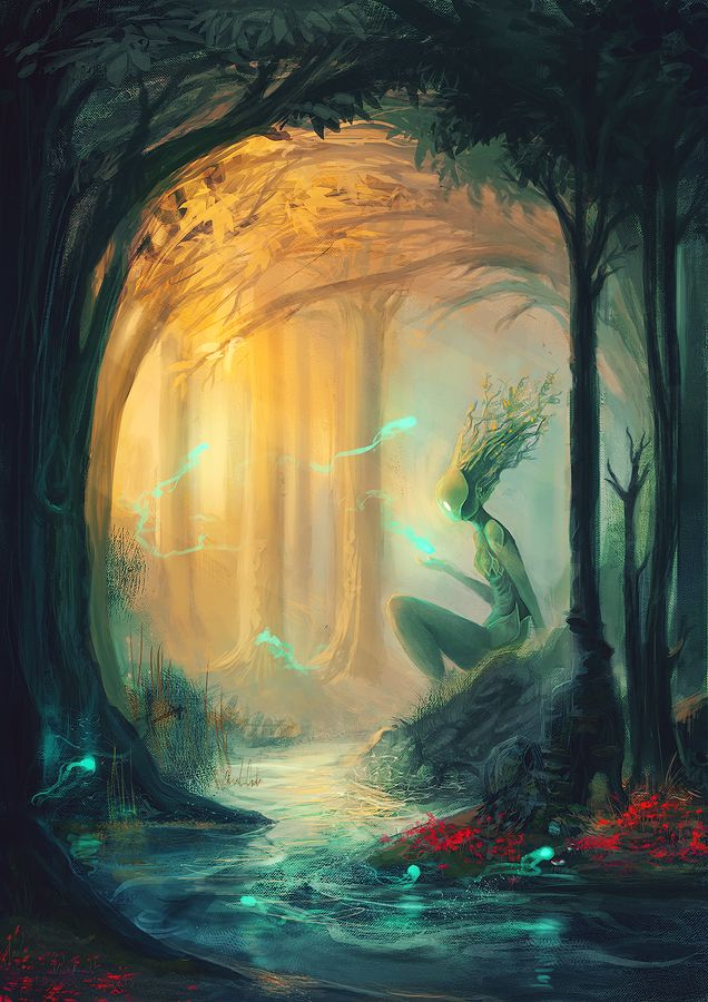 Forest by Draakh.deviantart.com on @deviantART