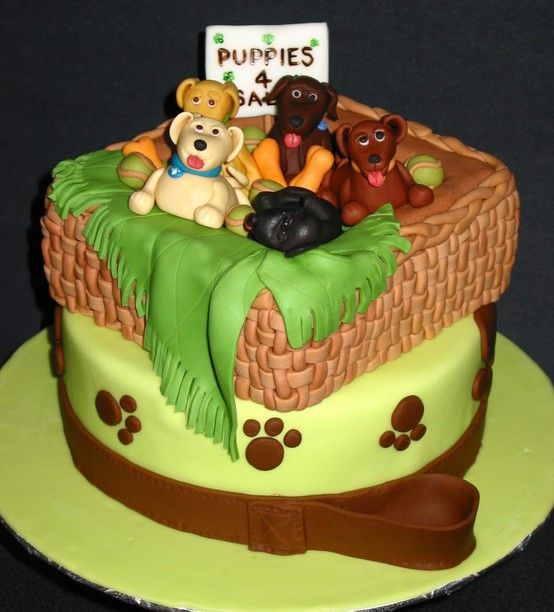 Birthday cake puppies for sale Cakes Pinterest Birthday cakes