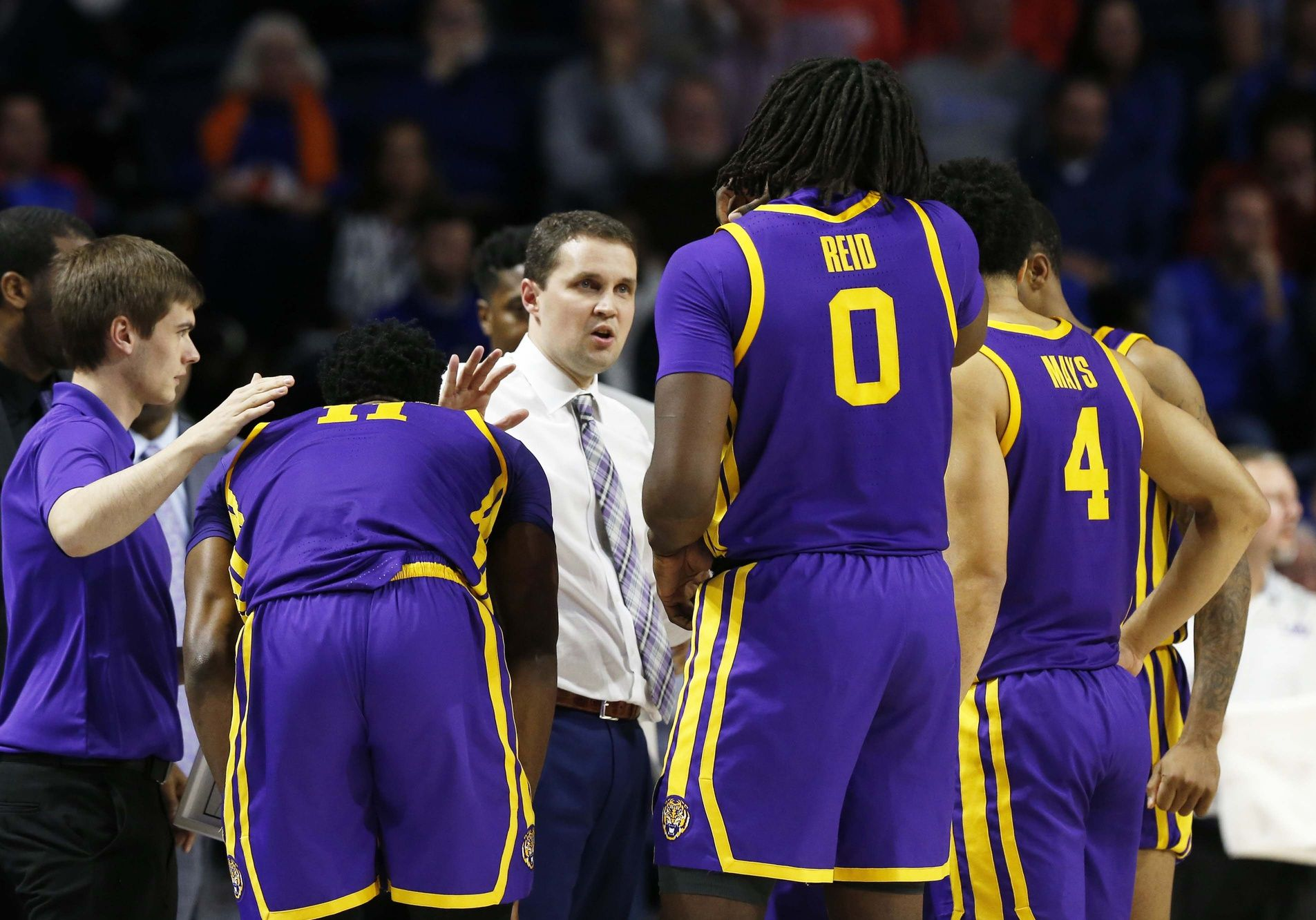 After Sweet 16 Appearance What Does Lsu Do Now About Will Wade With Images Lsu Sports Appearance