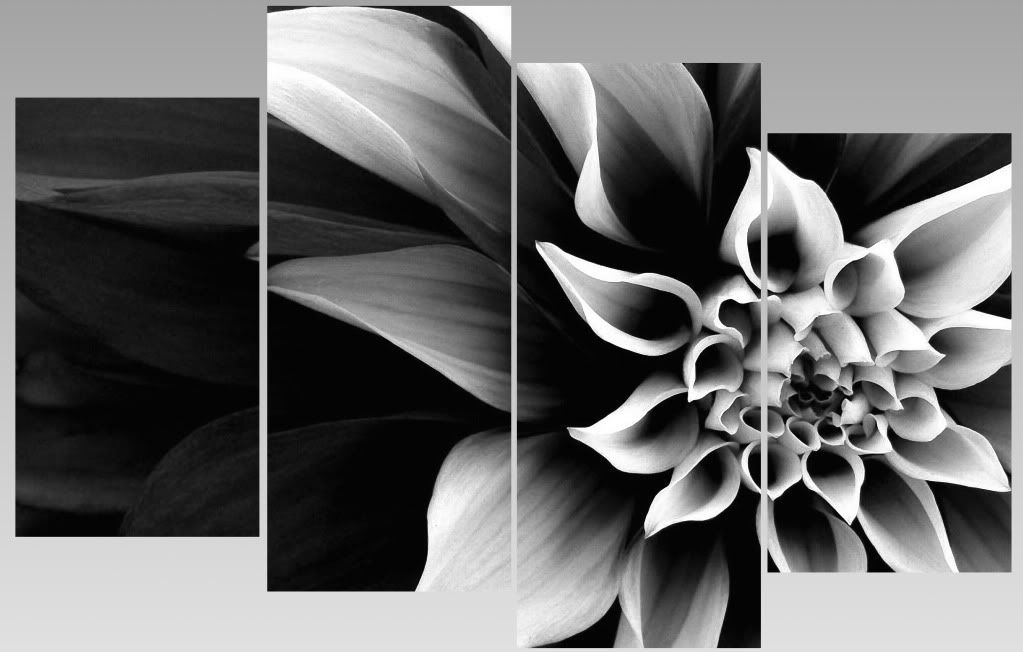 Extra Large Abstract Black U0026 White Flower Canvas Wall Art Multi Split 4  Panels